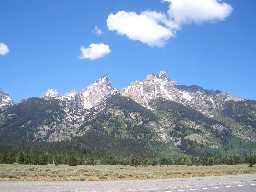 Teton Roadside View